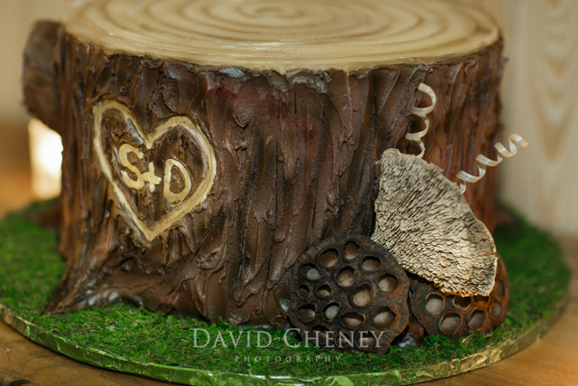 WildRoseEvnets-unique-grooms-cake-tree-stump-2
