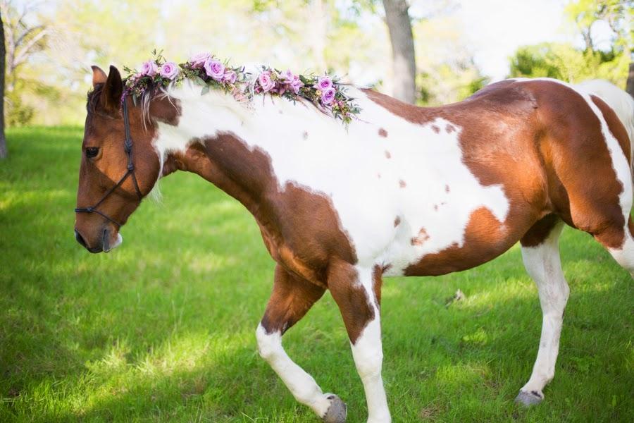 Horse Hair Tucks Unique